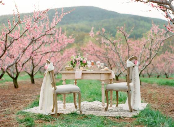Ślub i wesele na wiosnę